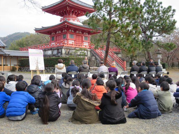 福島の桜が大覚寺に植樹されました!:0