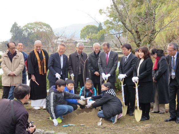 福島の桜が大覚寺に植樹されました!:2