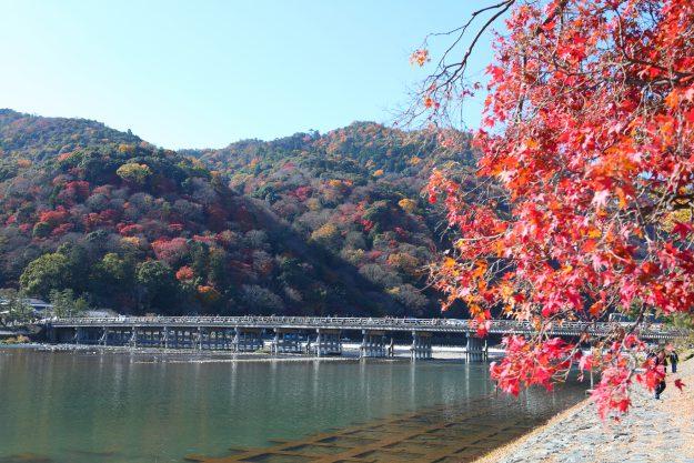10月28日(日)、秋のオープンキャンパス&学友祭開催!:0