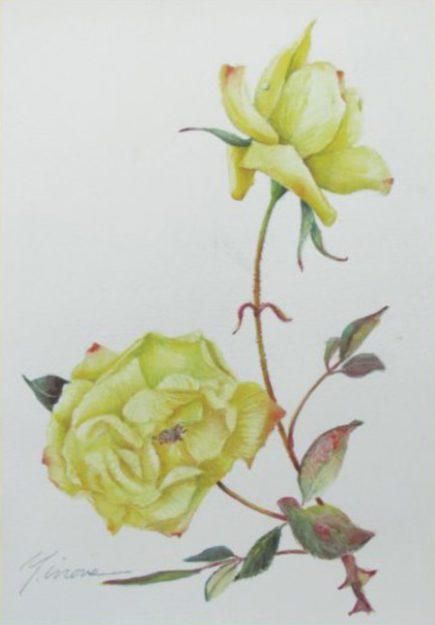 1/17~22卒業生井上良子さんが、くずはアートギャラリー(枚方市)で「第18回 愛しの植物画展」を開催されます。0